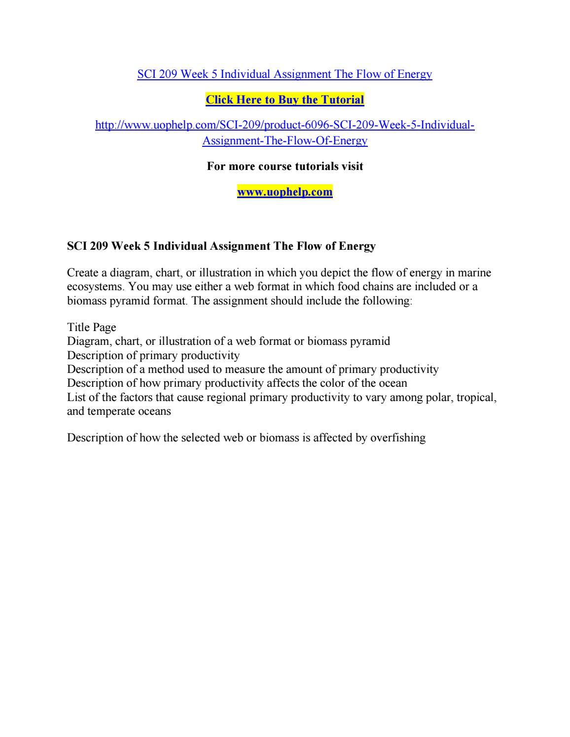 essay for application university common
