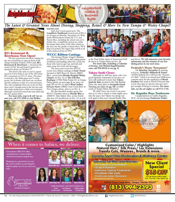 new tampa neighborhood news volume 24 issue 23 november 4 2016