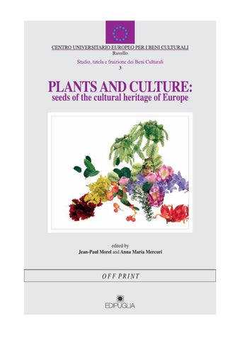 Fiori Bianchi E Gialli Undici Lettere.Plants And Culture By Manolis Manolis Issuu