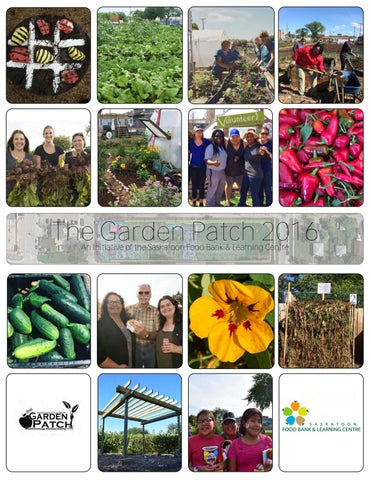 ThisThe YearGarden At The Patch Garden Patch 2016 An Initiative Of The  Saskatoon Food Bank U0026 Learning Centre