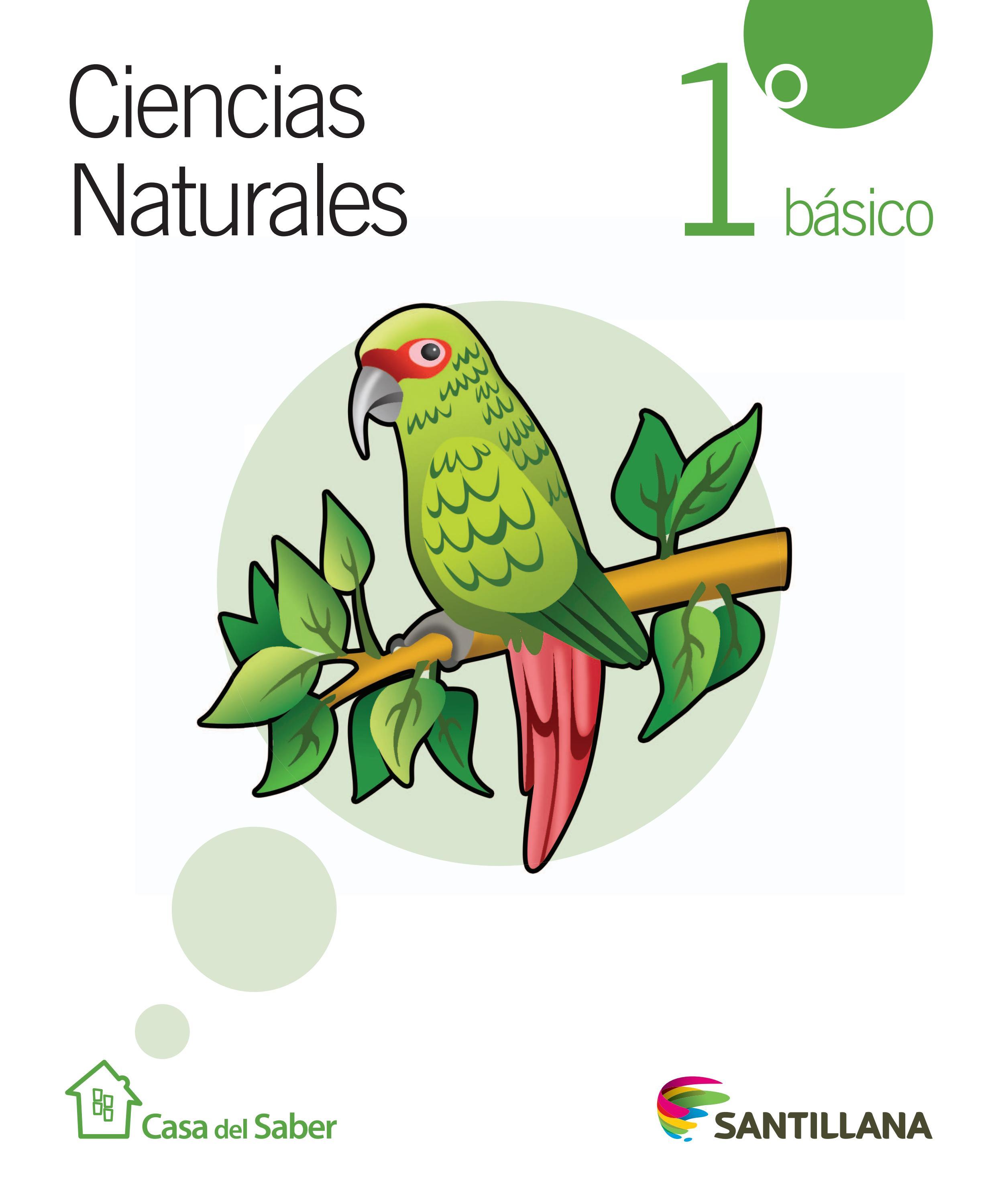 UNIDADES DIDACTICAS 1º - Bilingual Natural Science. I.E.S ...