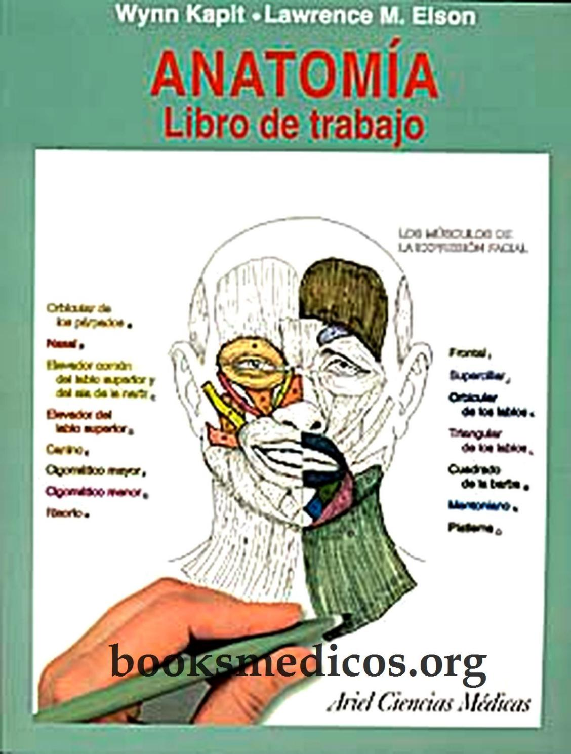 Anatomia libro de trabajo booksmedicos org by jhadyra - issuu