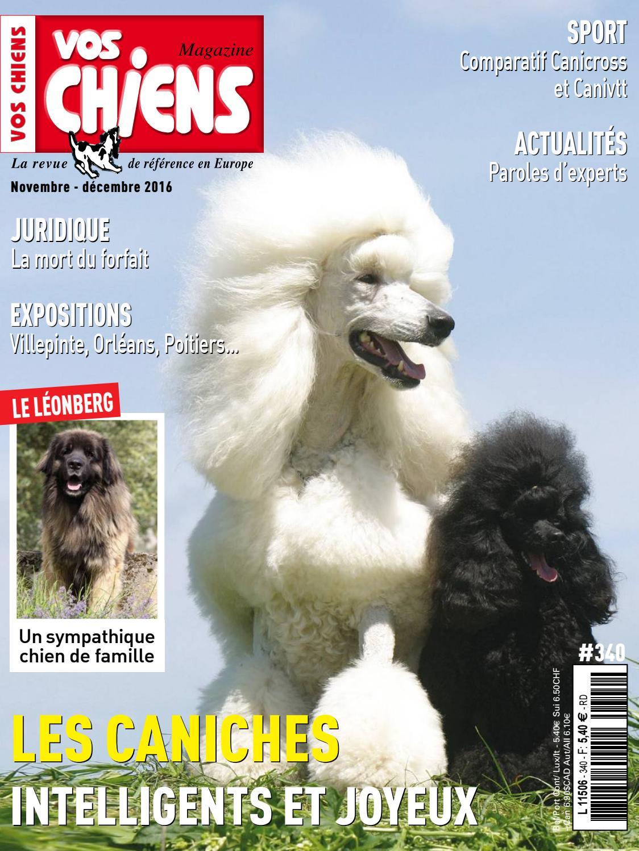 Pets-easy Pare Soleil Chien Voiture de Staffie Noir