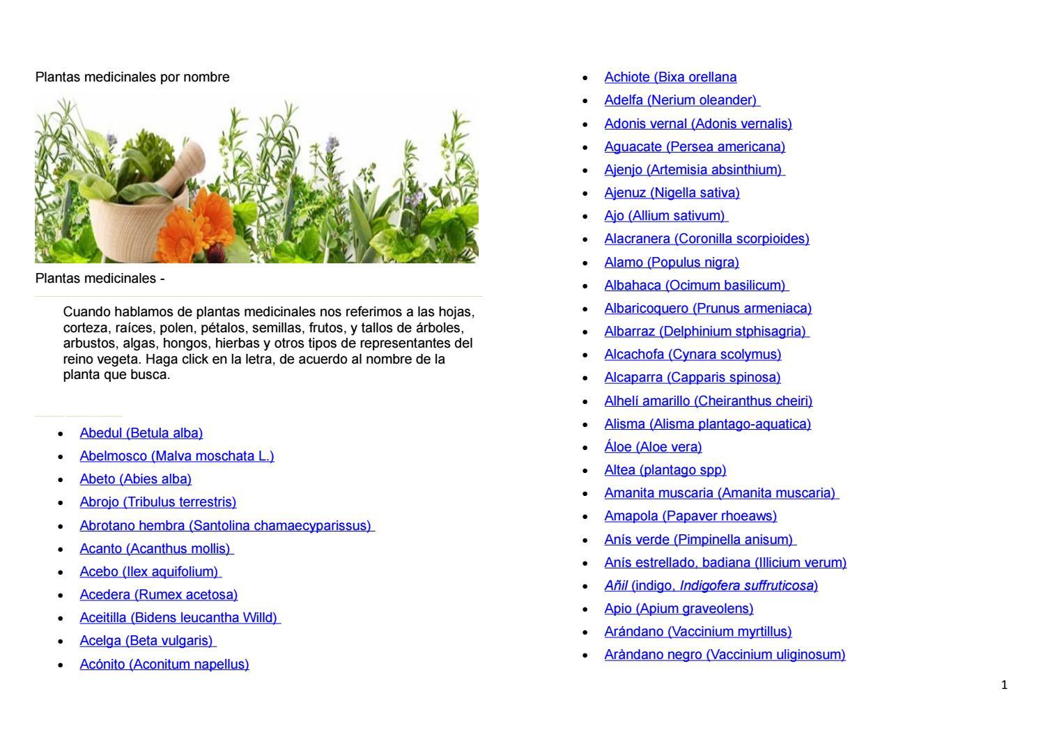 Alga Cochayuyo, grandes propiedades medicinales
