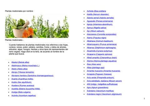 uretritis remedios naturales plantas de malva