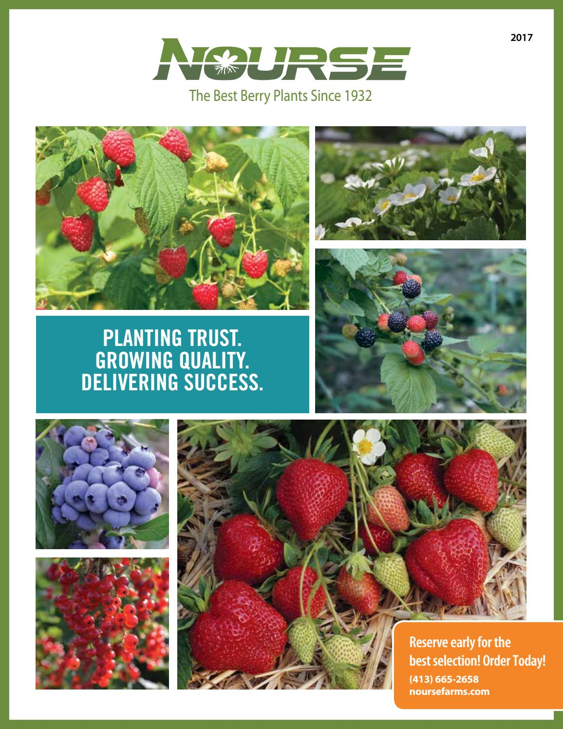2017 catalog home and commercial growers by nourse farms issuu