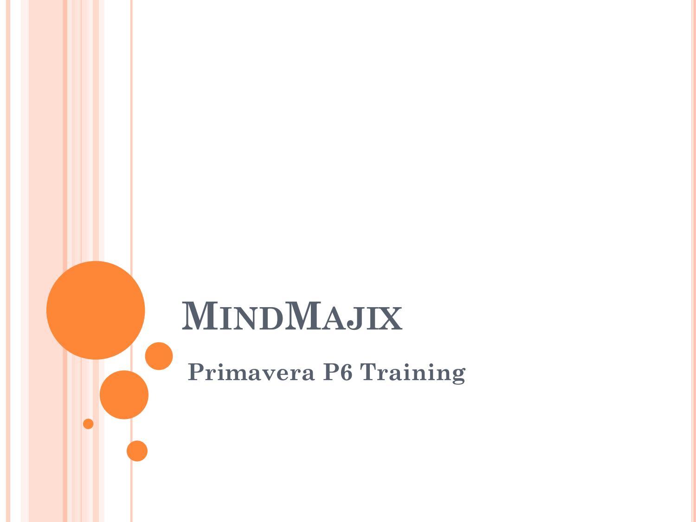 Primavera p6 training by sandralynn - issuu