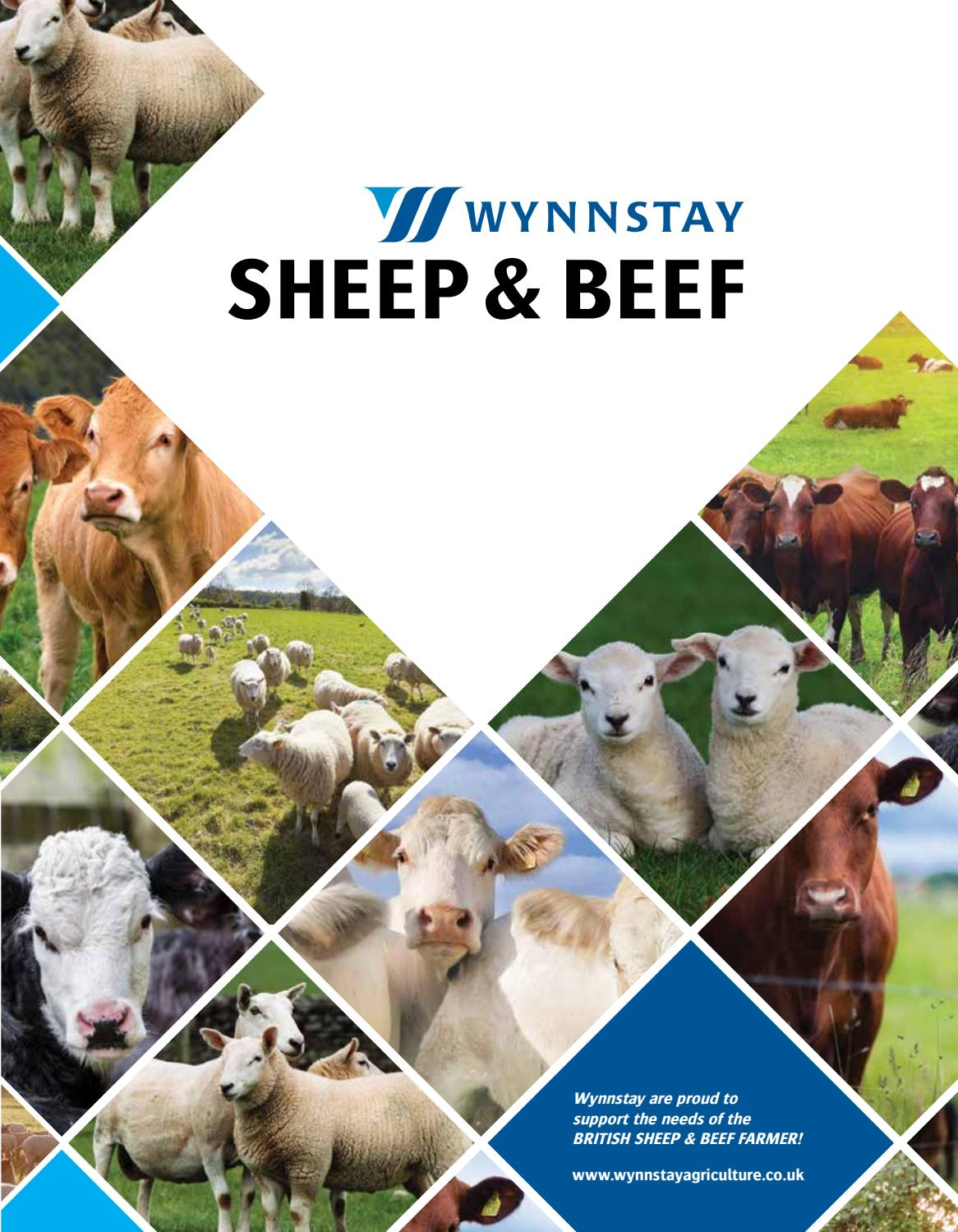 Wynnstay Sheep & Beef Catalogue by WynnstayGroup - issuu