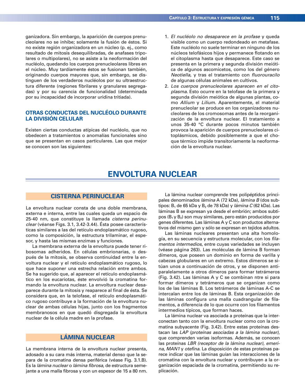B10l061a C3lular Pania6a 3 Ed By Perez Luna Jose Luis Issuu