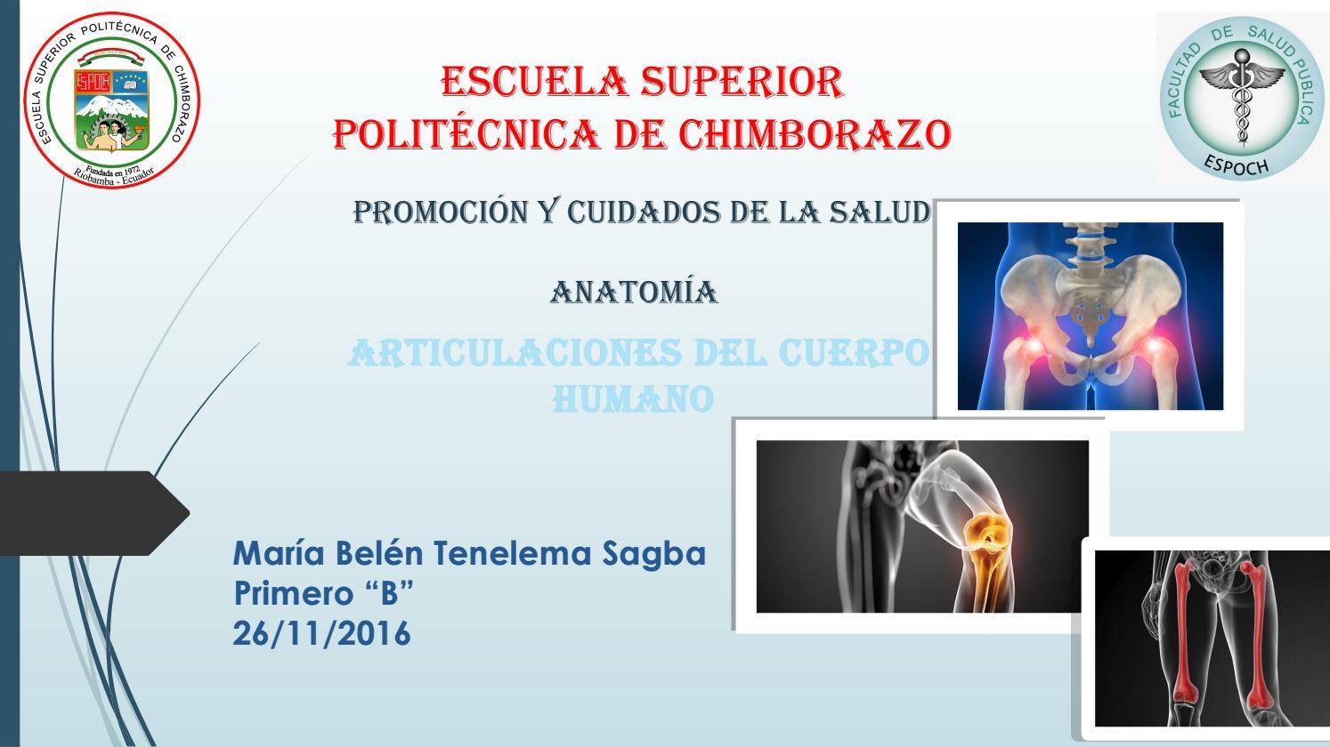Articulaciones by Belen Tenelema - issuu