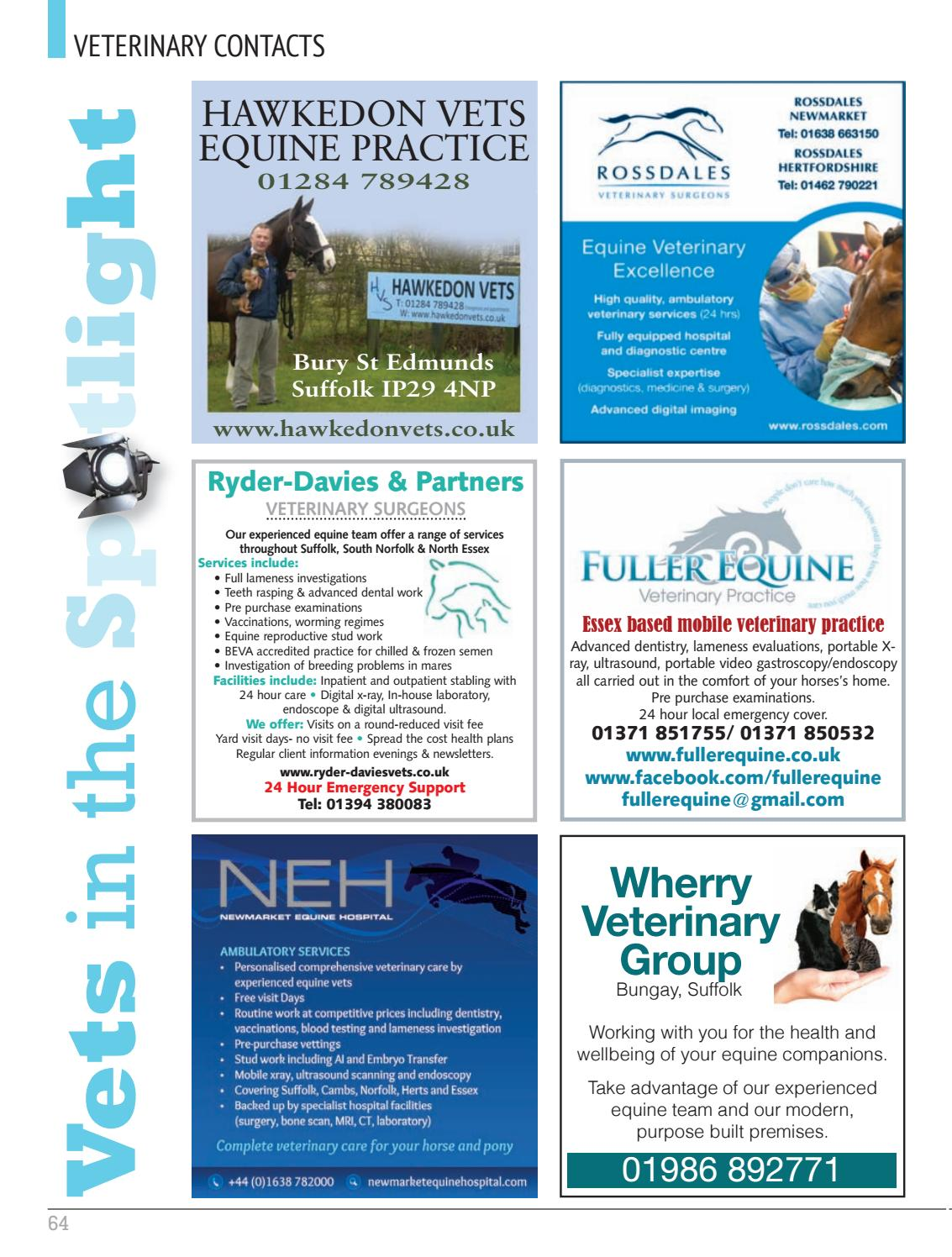 Absolute Horse December 2016 by Absolute Horse Magazine - issuu