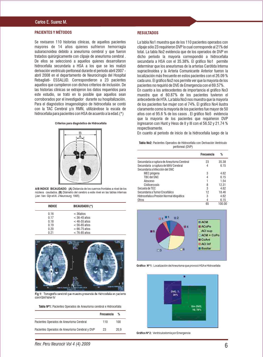 Revista Peruana de Neurocirugia octubre diciembre 2009 by..