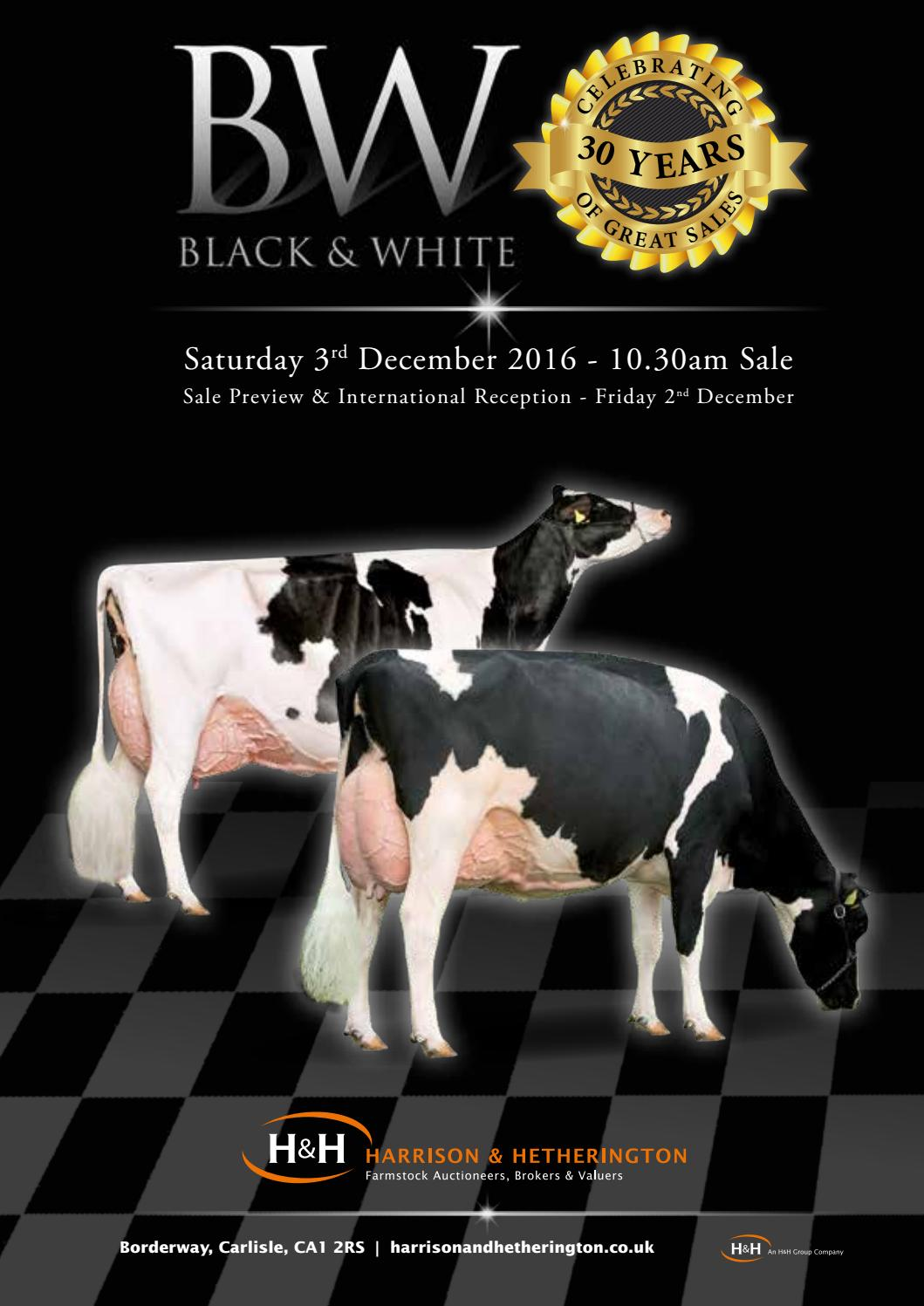 Borderway Black & White Dairy Sale 2016 by Harrison