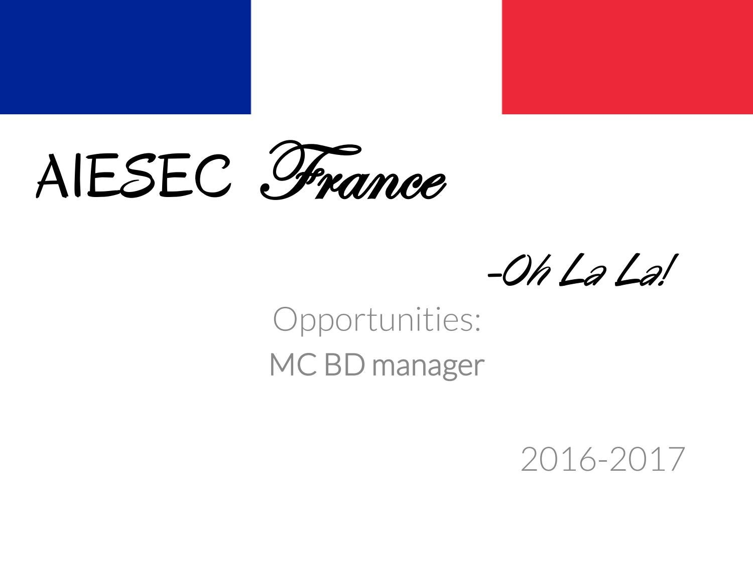 aiesec in france mc opportunities 2016 17 by aiesec france issuu