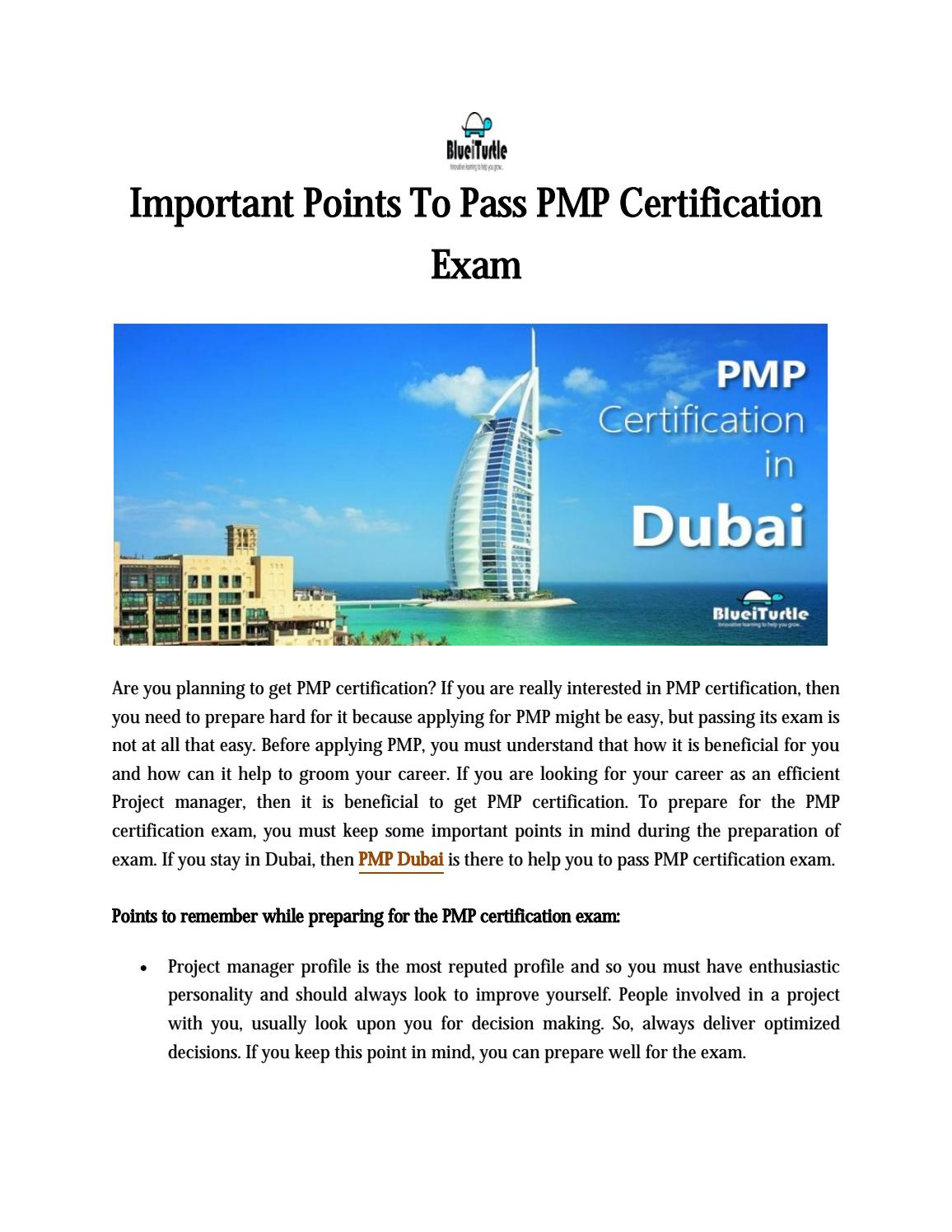 Blueiturtle Important Points To Pass Pmp Certification Exam By