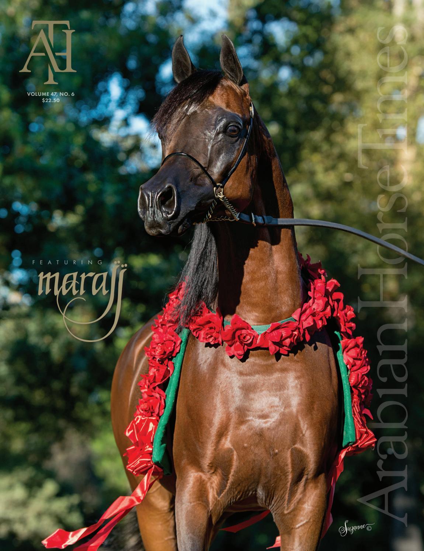 new concept 7db01 d109e Arabian Horse Times - Volume 47 No 6 by Arabian Horse Times - issuu