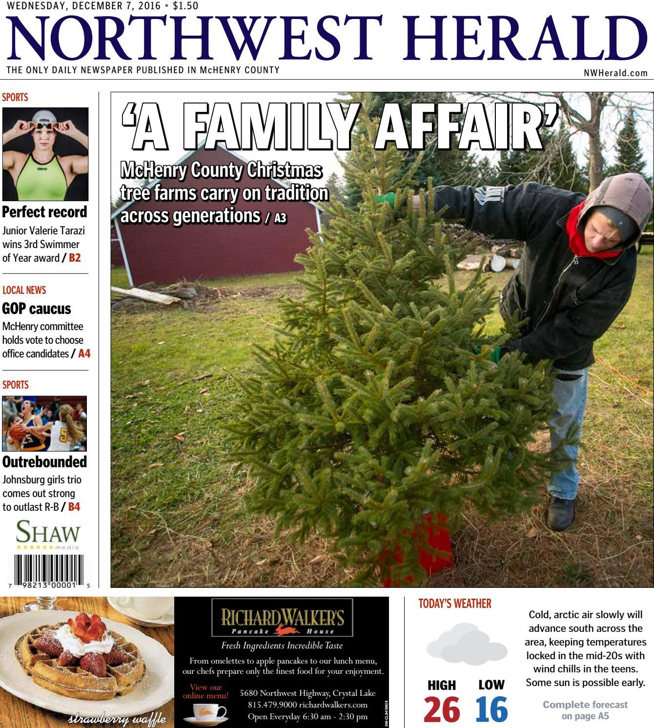 3 Days Expedited Express Snow-White Christmas Tree Reinforce Feet Xmas