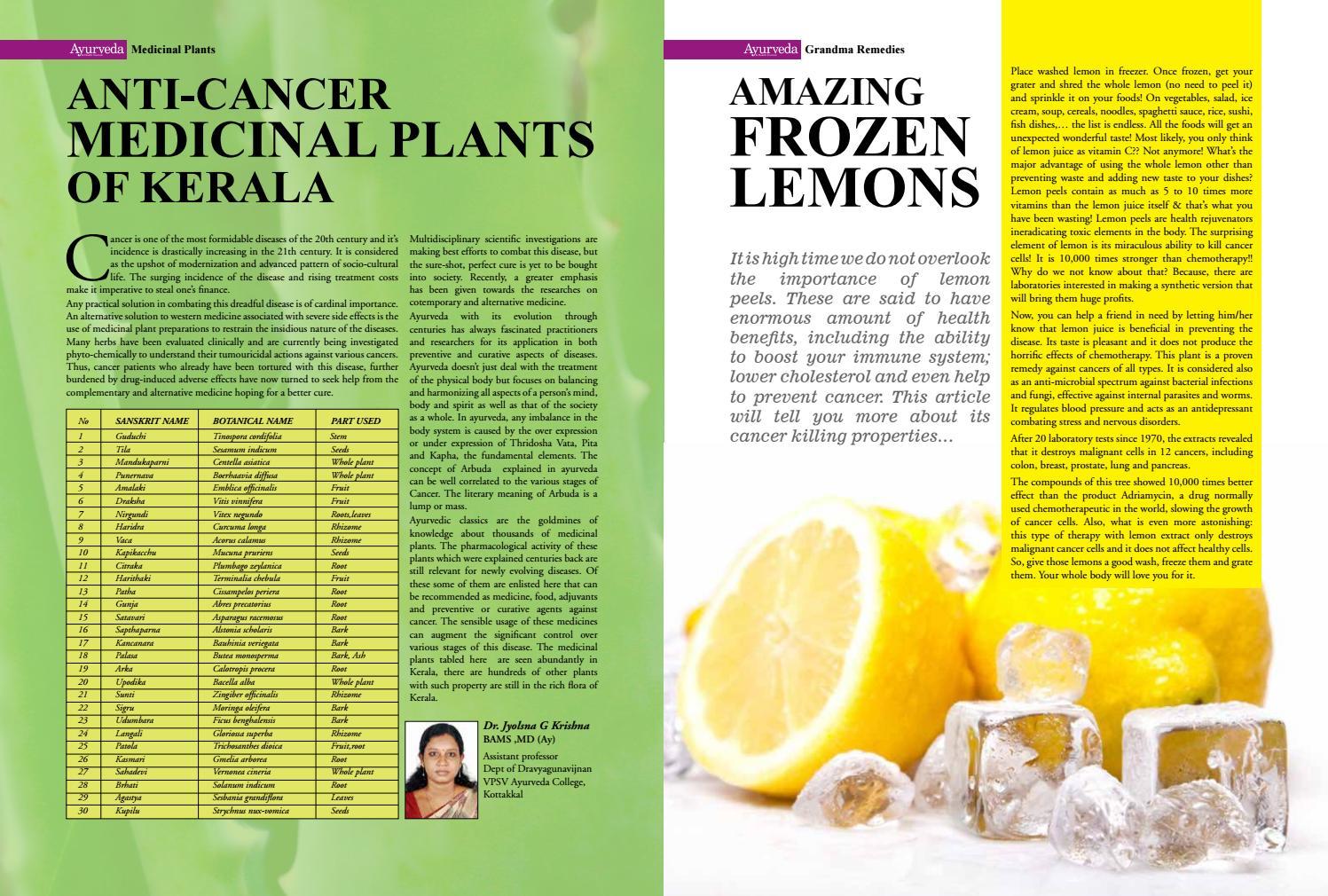 Ayurveda Magazine October - December 2016 by Ayurveda