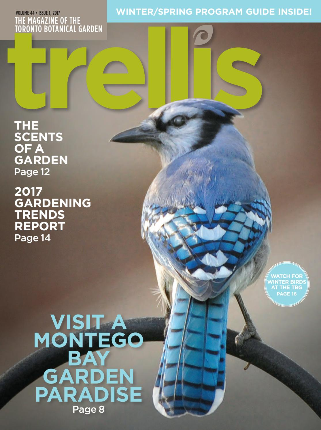 toronto botanical garden trellis magazine winter 2017 by toronto