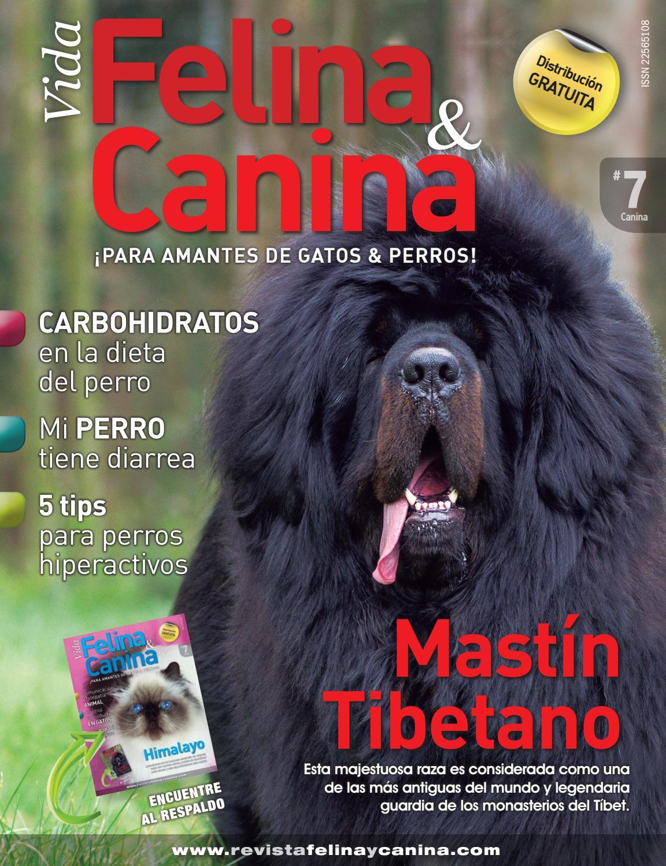 Vida Canina 7 by Grupo Kapital - issuu