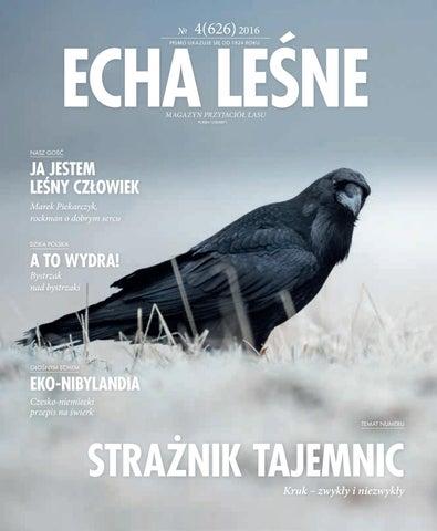 Echa Leśne Nr 4 626 2016 By Lasy Państwowe Issuu