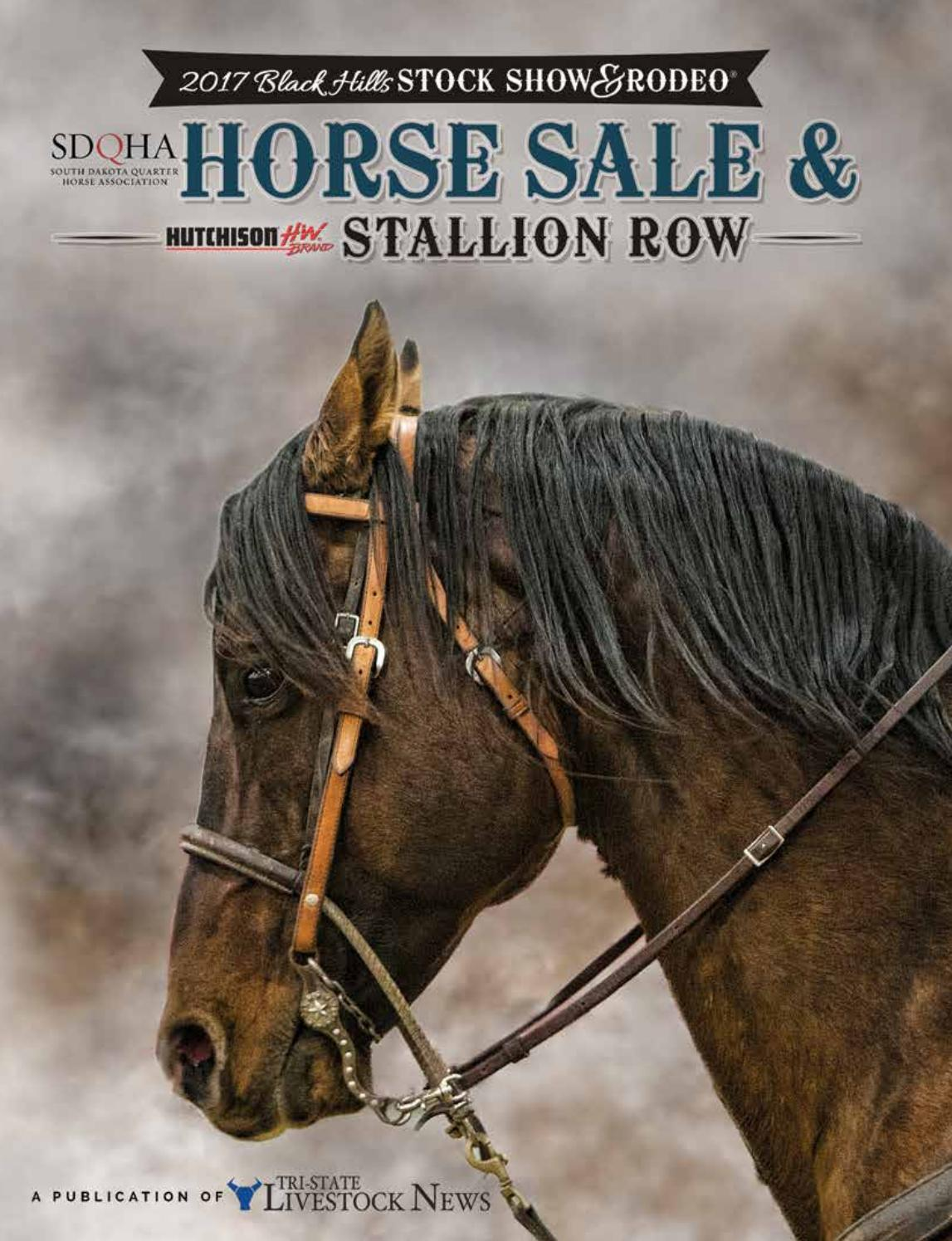 2017 Black Hills Stock Show & Rodeo | Horse Sale & Stallion Row by  Tri-State Livestock News - Farmer & Rancher Exchange - issuu