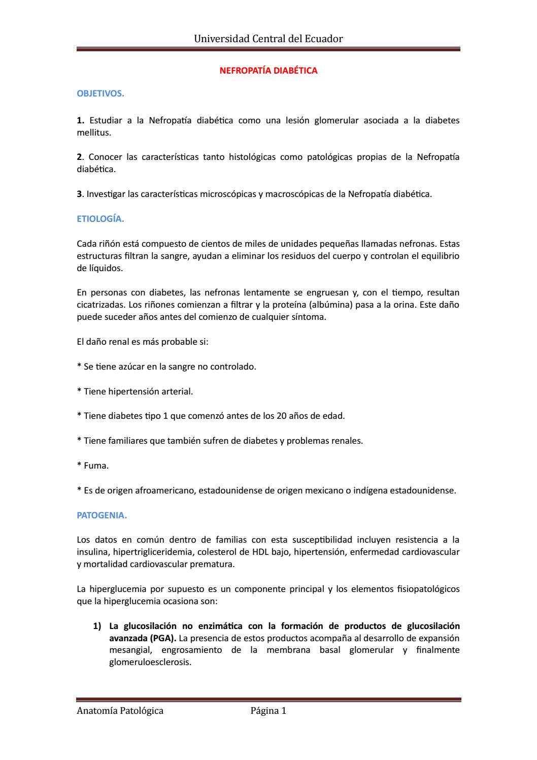 pdf de diabetes de nefropatía