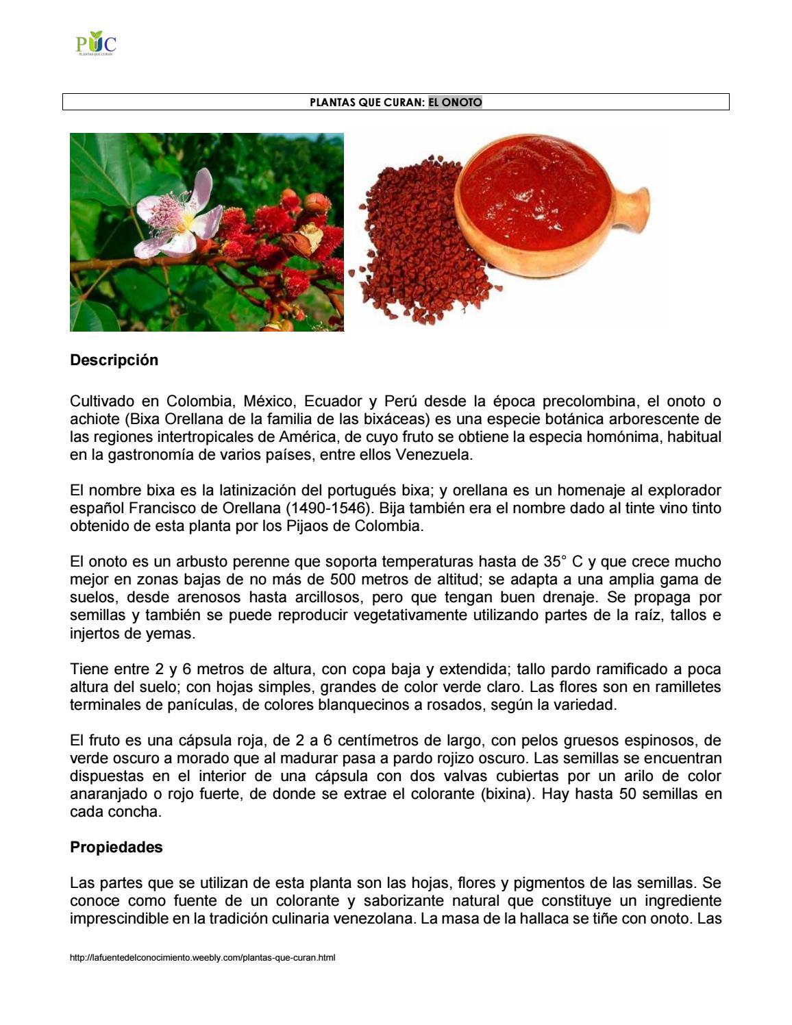 Propiedades del onoto by Plantas - issuu