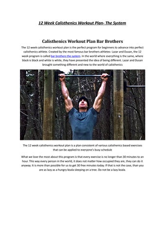 12 Week Calisthenics Workout Plan By Calisthenics Work - Issuu