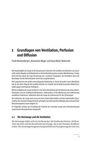 9783954662128_leseprobe by MWV Medizinisch Wissenschaftliche ...