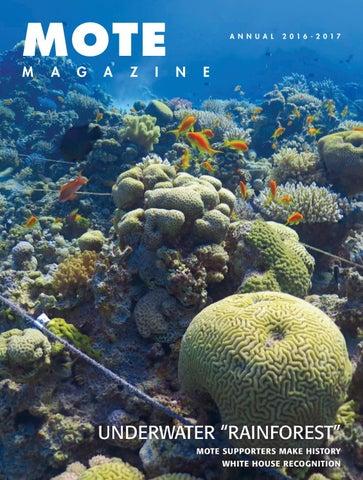 e5cefcbef0bd Mote Magazine - annual winter 2016-2017 by Mote Marine Laboratory ...