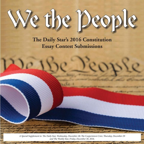 strategic plan to pass the we the people amendment to the united  we the people