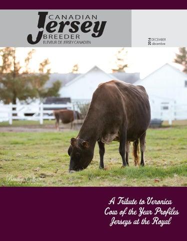 764e36f2d2986d 2016 Canadian Jersey Breeder December by Blodgett Communications - issuu