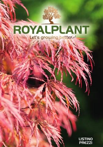 Listino Prezzi Royalplant By Luca Brunelli Issuu