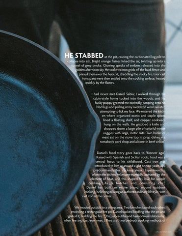 Page 41 of The Cast Iron Cook