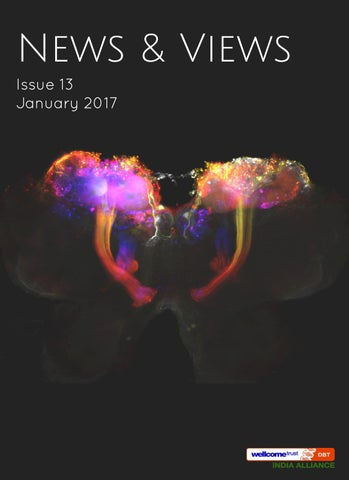 India Alliance Newsletter I Issue 13 I January 2017 by The Wellcome