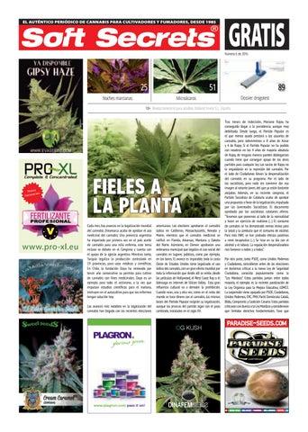 c9d33a1740a72 El auténtico periódico de cannabis para cultivadores y fumadores