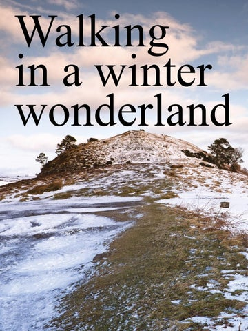 Page 8 of Walking in a winter wonderland