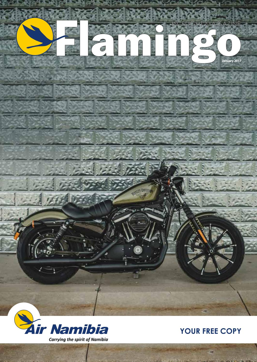 Flamingo December 2016 January 2017 By Air Namibia Issuu Wiring Diagrams European Audi Type 44s Pictures To Pin On Pinterest