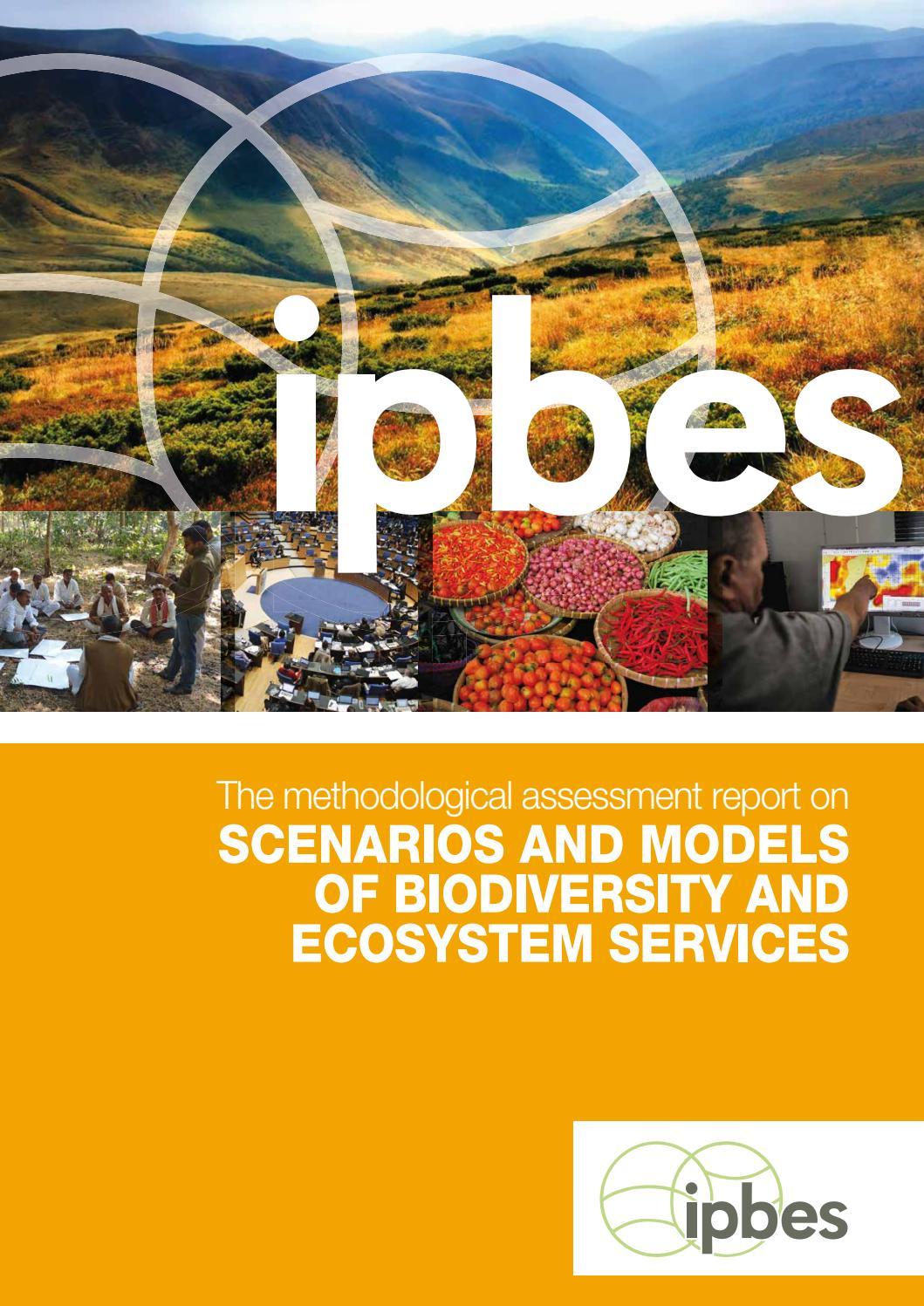 Ipbes Scenarios Of Biodiversity 350p By Maro Haas Issuu Zehn Mop Zt 22 Orange