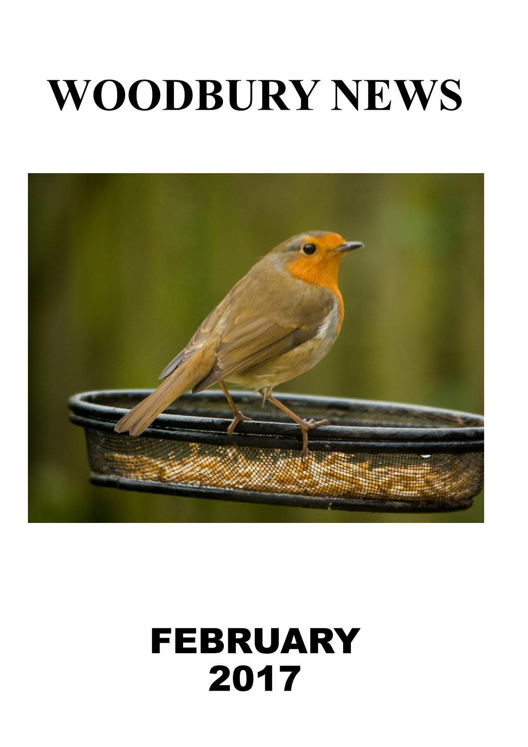 February 2017 by Woodbury News issuu