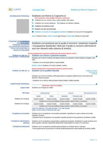 Modello Curriculum Vitae Da Compilare Word By Alberto Falcone Issuu