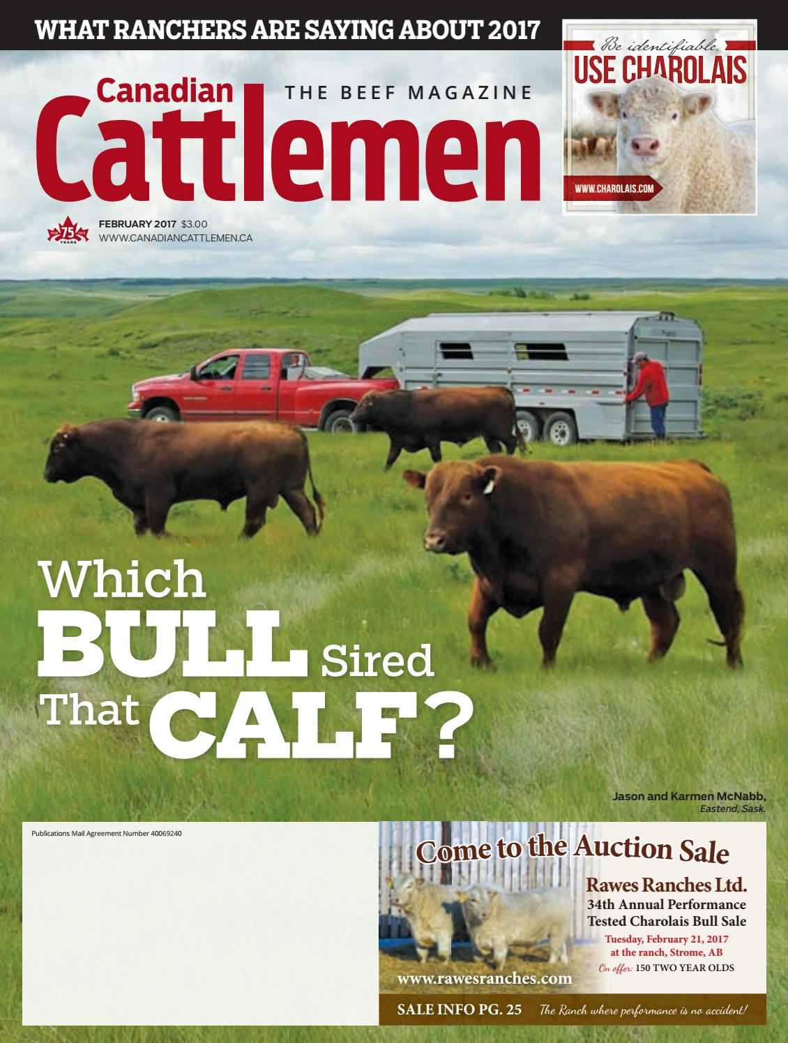 Set 3 Calf Fluid Nipple Magrath Feeder Replacement  Cow Dairy Beef Products New