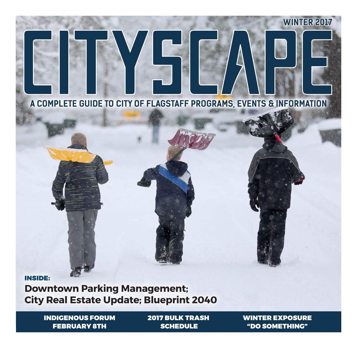 2017 Winter CityScape by Arizona Daily Sun issuu