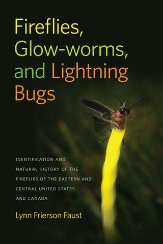 fireflies in the garden movie explanation