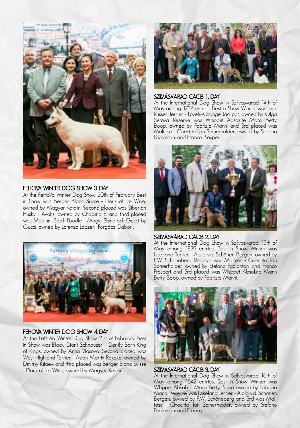 f2857adfc Best in Show Magazine Annual 2017 by Best in Show Magazine - issuu