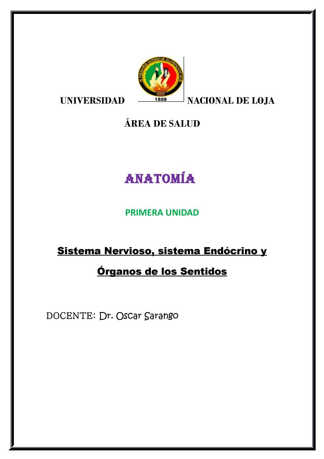 Anatomía I Unidad by Oscar Sarango - issuu