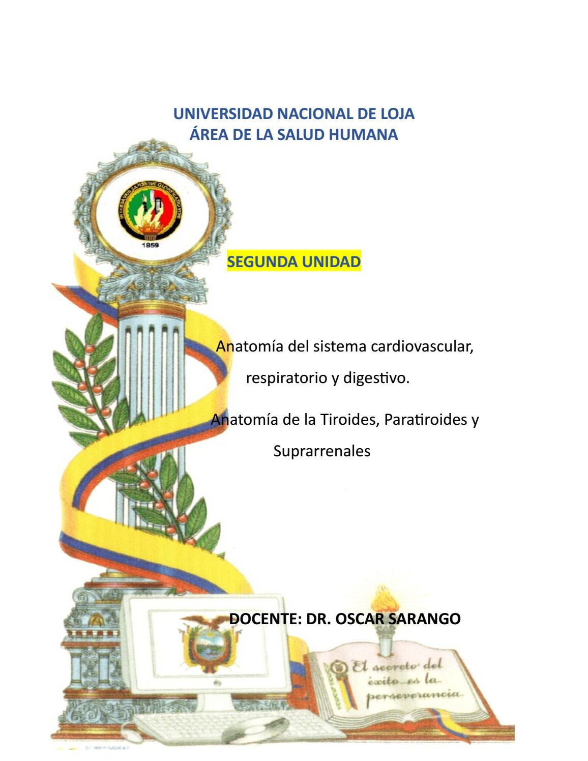 Anatomia II Unidad by Oscar Sarango - issuu