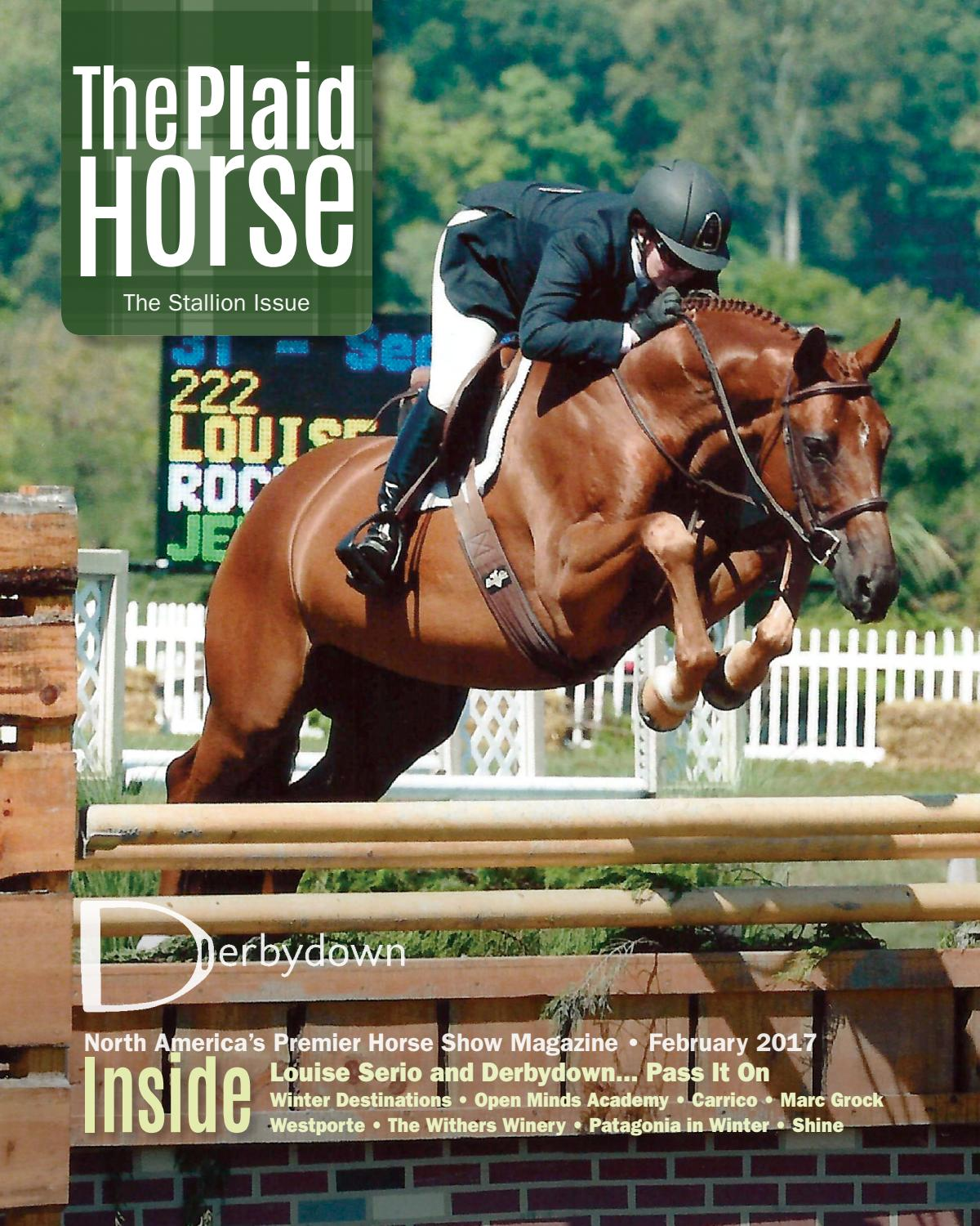 The Stallion Issue February 2017 The Plaid Horse By The Plaid Horse Issuu