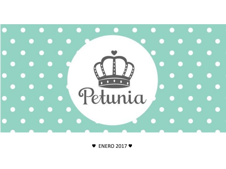 c30d4c79edab Catalogo Petunia 2017 by Petunia - issuu